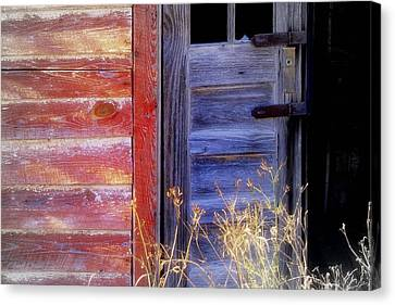 Aging Beauty.. Canvas Print by Al  Swasey