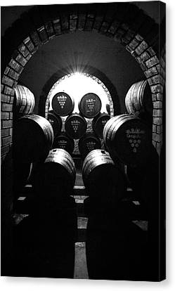 Aging Wine - Columbia South America Canvas Print by Daniel Hagerman