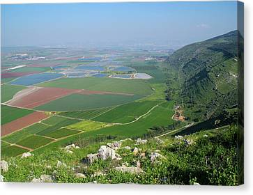 View From  Mount Gilboa Canvas Print