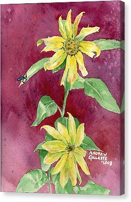Ah Sunflowers Canvas Print by Andrew Gillette