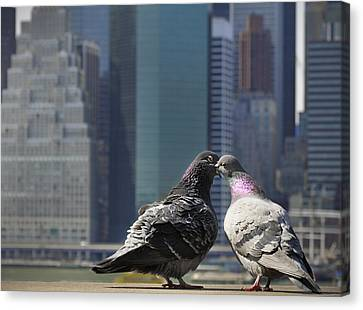 Ahh To Be Young And In Love In The City Canvas Print by Vicki Jauron