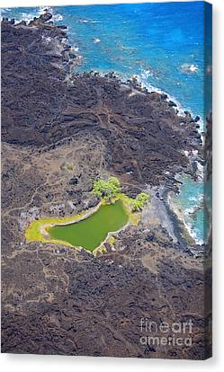 Ahihi Kinau Natural Reserve Canvas Print by Ron Dahlquist - Printscapes