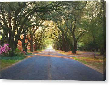 Aiken South Boundary II Canvas Print