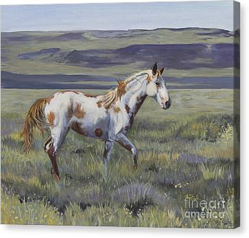 Aiyana The Wild Mustang Canvas Print by Jordan Parker