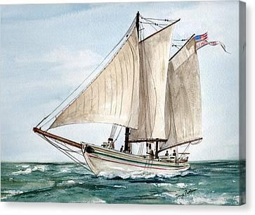 Aj Meerwald  Canvas Print by Nancy Patterson