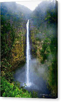 Akaka Falls Canvas Print by Christopher Holmes