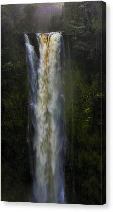 Canvas Print featuring the photograph Akaka Falls by Ellen Heaverlo