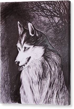 Huskies Canvas Print - Akela by Anna  Duyunova