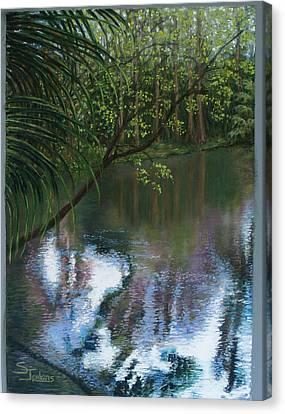Alafia River Reflection Canvas Print by Susan Jenkins