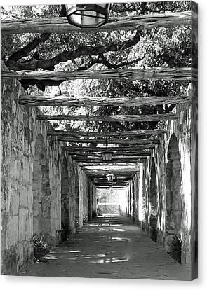 Alamo Corridor Canvas Print by Debbie Karnes