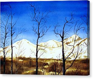 Alaska Blue Sky Day  Canvas Print by Brenda Owen
