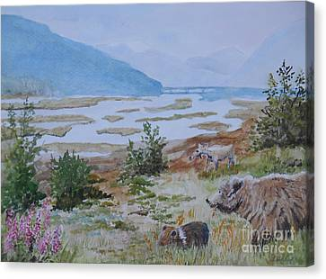 Alaska - Denali 2 Canvas Print