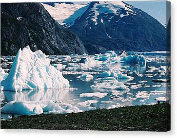 Alaska In The Spring Canvas Print