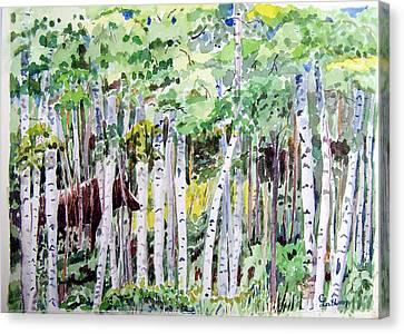 Alaska - Moose In Birches Canvas Print