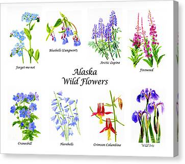 Alaska Wild Flowers Poster Horizontal Canvas Print by Sharon Freeman