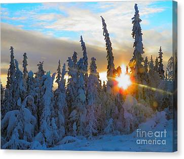 Alaska Winter High Noon Canvas Print