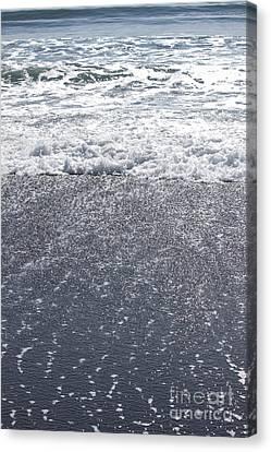 Alaskan Beach Paradise Canvas Print