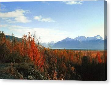 Alaskan Fall Canvas Print by Brigid Nelson