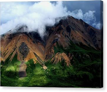 Alaskan Grandeur Canvas Print