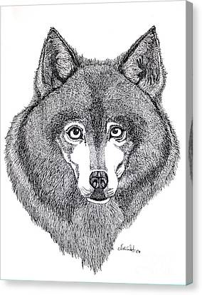 Huskies Canvas Print - Alaskan Husky by Nick Gustafson