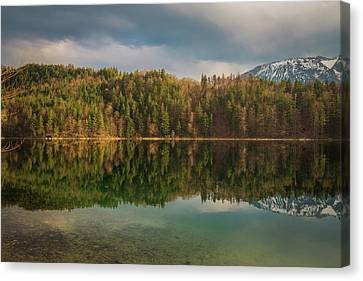 Alatsee Forest Reflection Canvas Print