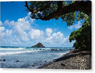 Alau Island, Maui Canvas Print