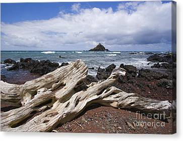 Alau Islet, Driftwood Canvas Print by Ron Dahlquist - Printscapes
