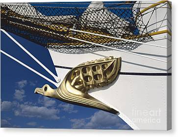 Albatross Figurehead Canvas Print by Heiko Koehrer-Wagner