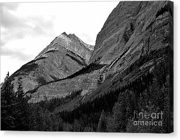 Canvas Print featuring the photograph Alberta, 2015 by Elfriede Fulda