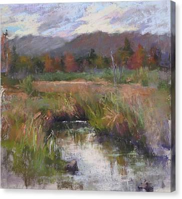 Alder Meadow September Canvas Print by Susan Williamson