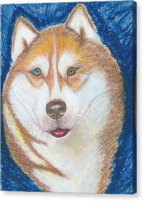 Alek The Siberian Husky Canvas Print