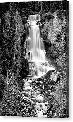 Canvas Print featuring the photograph Alexander Falls - Bw 1 by Stephen Stookey