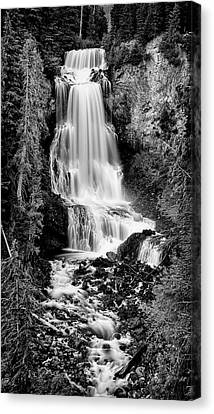 Canvas Print featuring the photograph Alexander Falls - Bw 2 by Stephen Stookey