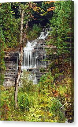 Alger Falls Canvas Print by Michael Peychich