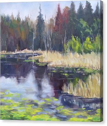 Algonquin Marsh Canvas Print by Diane Daigle
