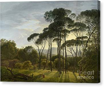 alian Landscape with Umbrella Pines Canvas Print by MotionAge Designs