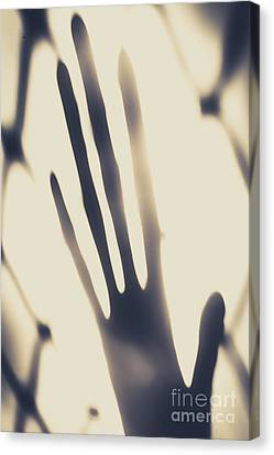 Alien Contact Canvas Print by Jorgo Photography - Wall Art Gallery