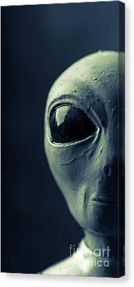 Alien Half Profile Phone Case Canvas Print by Edward Fielding