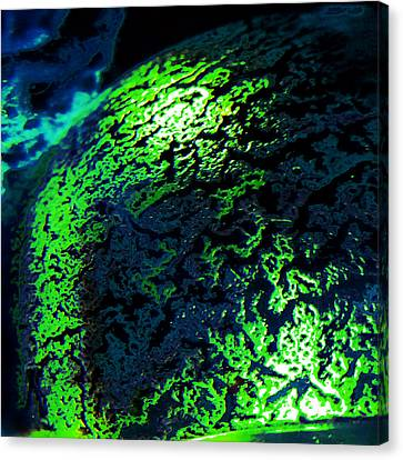 Alien Shell Canvas Print