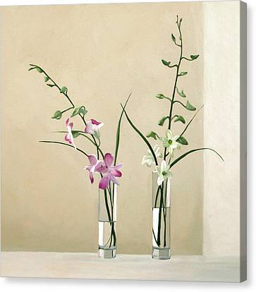 Alison's Orchids Canvas Print