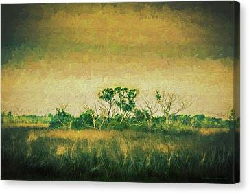 All Alone Canvas Print by Marvin Spates