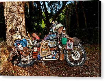 All But The Kitchen Sink Canvas Print by Christopher Holmes