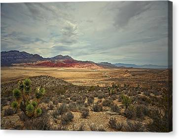 Canvas Print featuring the photograph All Day by Mark Ross