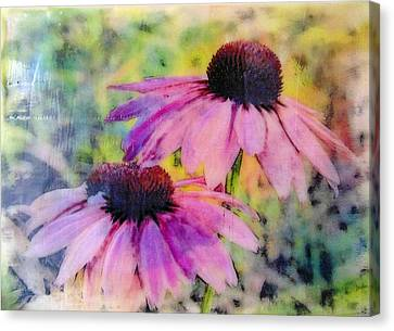 All Delights Are Vain Canvas Print by Karen Brown