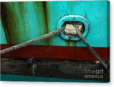 All Tied Up Canvas Print by Bob Christopher