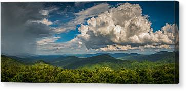 Canvas Print featuring the photograph All Weather by Joye Ardyn Durham