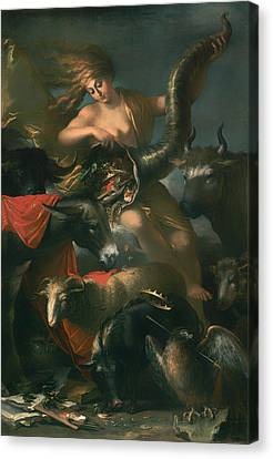 Allegory Of Fortune Canvas Print by Mountain Dreams