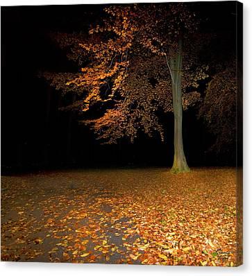 Licht Canvas Print - Alleine by Renata Vogl