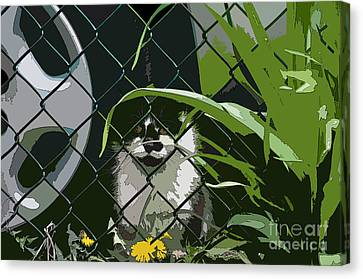Alley Cat Canvas Print by Reb Frost