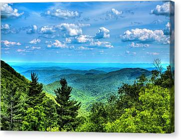 Alligator Back Overlook Canvas Print by Dale R Carlson